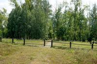 Немецкое кладбище. г.Арск. 2014