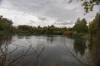 Ушковский пруд с лебедями в г. Менделеевске РТ, 2014 г.