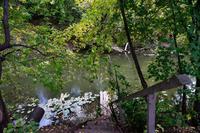 Спуск к речке Тойма (территория краеведческого музея г. Менделеевска)