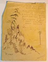 Рисунок. Остроумов А.С. Сосна. Пестрецы. 1939. Бумага, карандаш, чернила