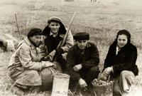 Фото. Преподаватели и сотрудники  КАИ на сельхозработах. 1941