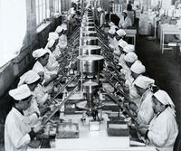 Фото. Участок фасовки. 1940-е