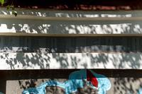 Список погибших земляков на фронтах Великой Отечественной войны 1941-1945гг. Дер. Кунгер. 2014