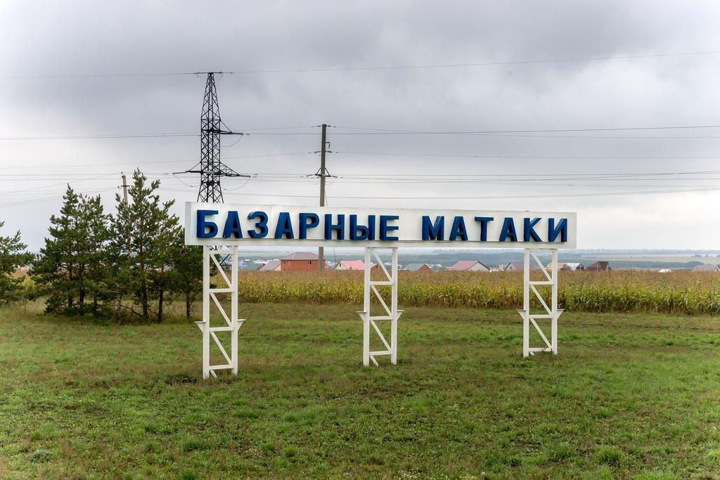 Фото №17931. Указатель на въезде в с. Базарные Матаки. 2014
