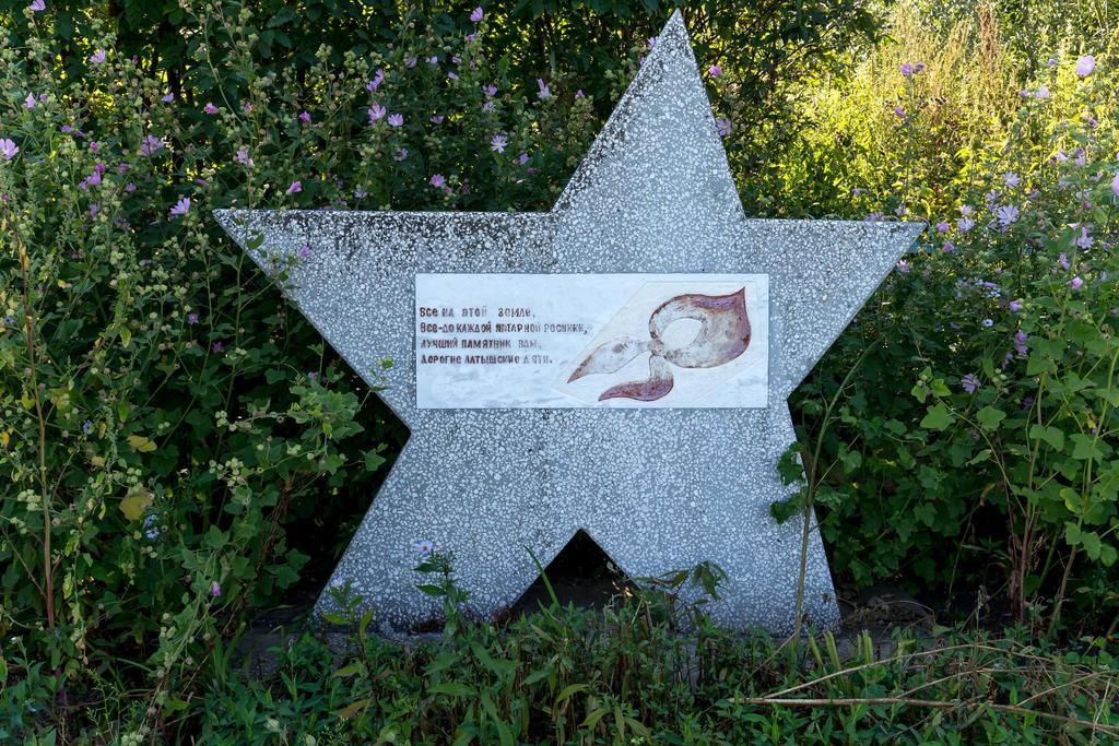 Фото №5197. Звезда – памятник латышским детям, умершим в годы Великой Отечественной войны в эвакуации. Село Большой Менгер. 2014
