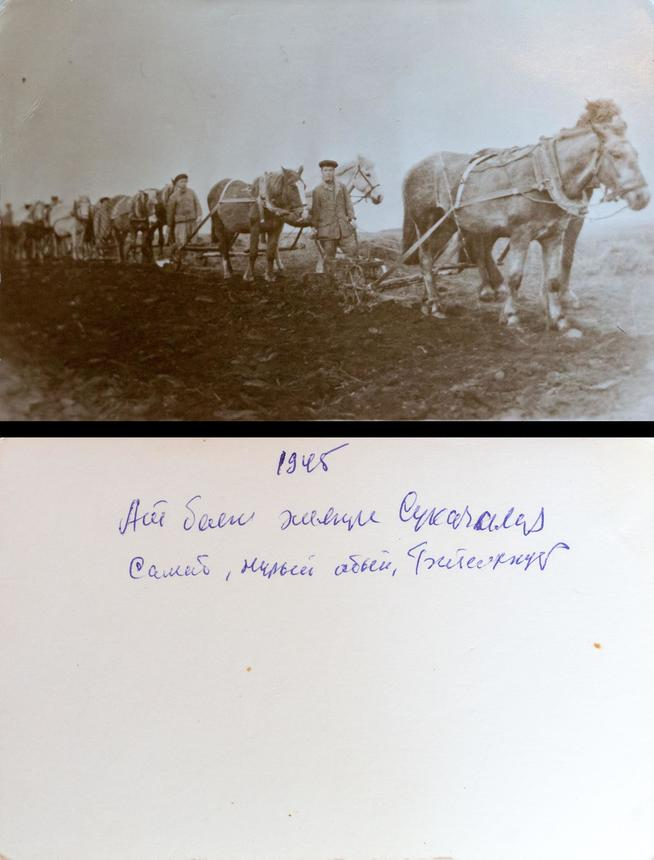 Фото №4589. Фото. Колхозники на пахоте, 1945