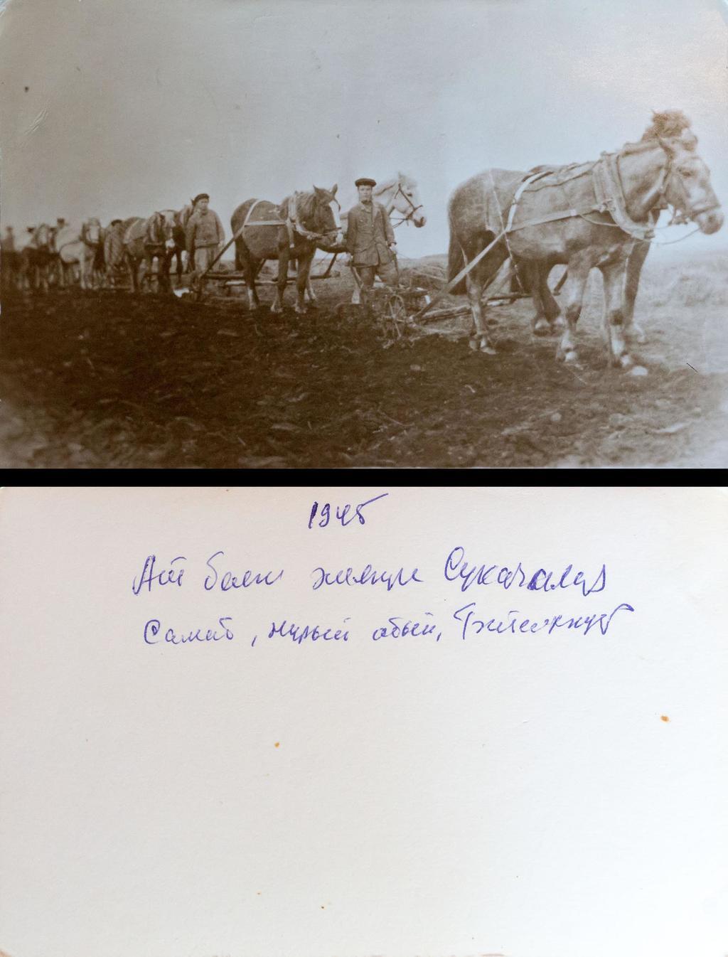 Фото. Колхозники на пахоте, 1945 ©Tatfrontu.ru Photo Archive