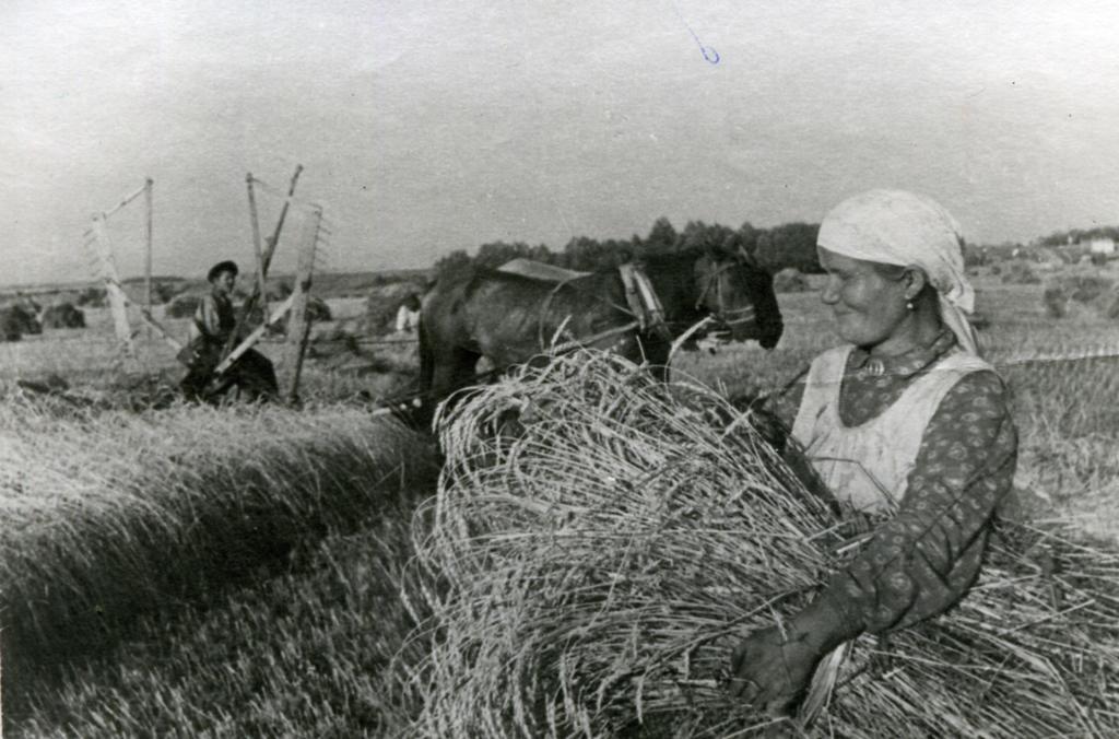 Фото №89499. Уборка пшеницы в колхозе им. С.М. Кирова Атнинского района ТАССР. 1944