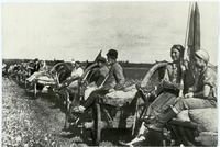 Национальный архив Республики Татарстан